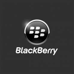 Bao Da BlackBerry